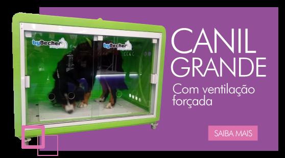 Canil Grande